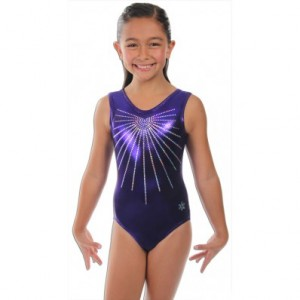 glitz-leotard-purple
